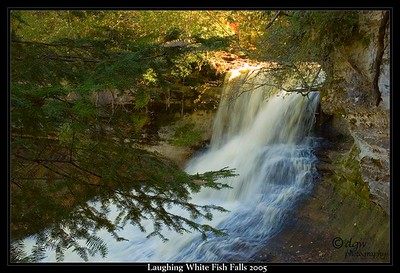 Laughting Whitefish Falls 2005